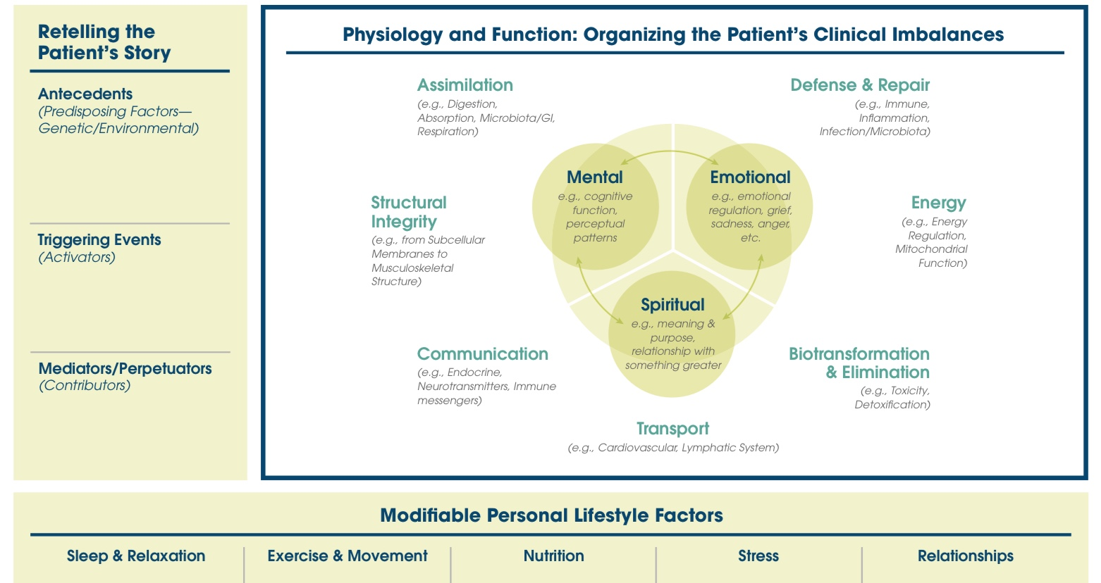 The Functional Medicine model helps us discover why we feel the way we do.